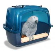Bath parrots